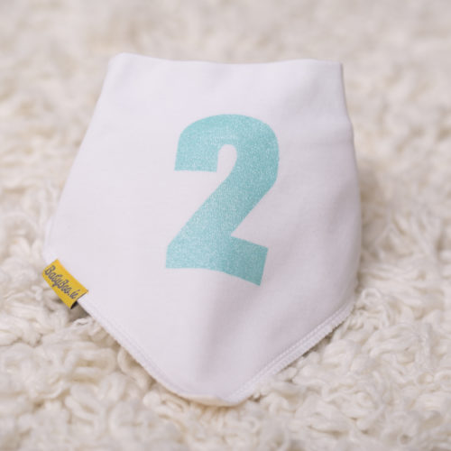 Aqua second birthday bandana bib
